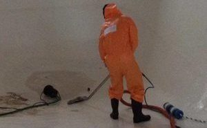 Technician In Full Gear Conducting Mold Cleanup