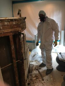 Mold Expert Restoring A Residential Property