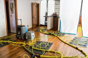 Drying And Dehumidifying A Living Room